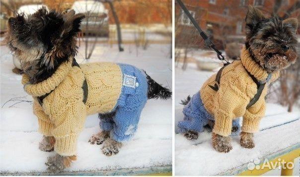 Как вяжут овчарок