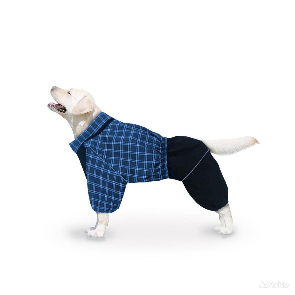 Дождевик для крупных собак