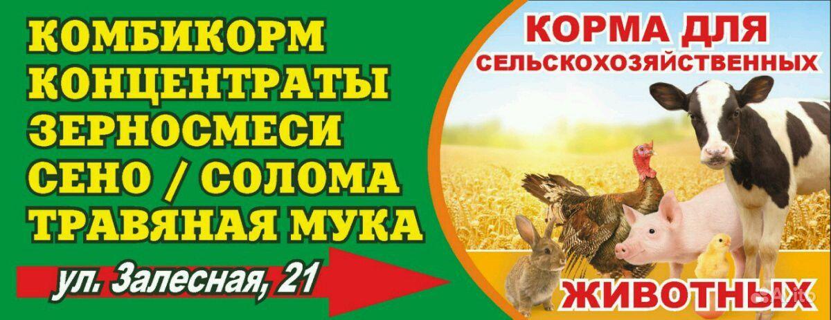 Корма для с/х животных и птицы в Канске - фотография № 1