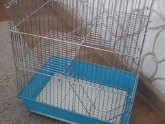 Клетка, колесо, кольцо для декоративных птиц, шинш