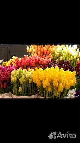 Розы оптом к 8 марта, нужны курьеры по доставке цветов