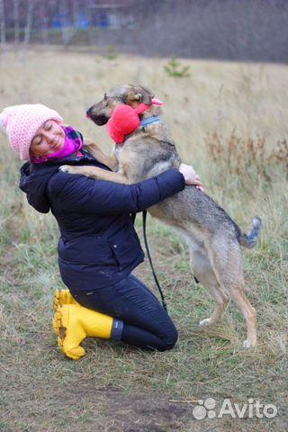 Собака очаровашка Смайл в дар купить на Зозу.ру - фотография № 3