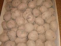 """Вкусный картофель """" синеглазка"""" и семена"""