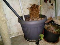 Горшок цветочный 5 шт большие