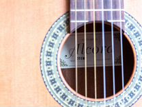 Гитара Alcora 201 Matt + чехол
