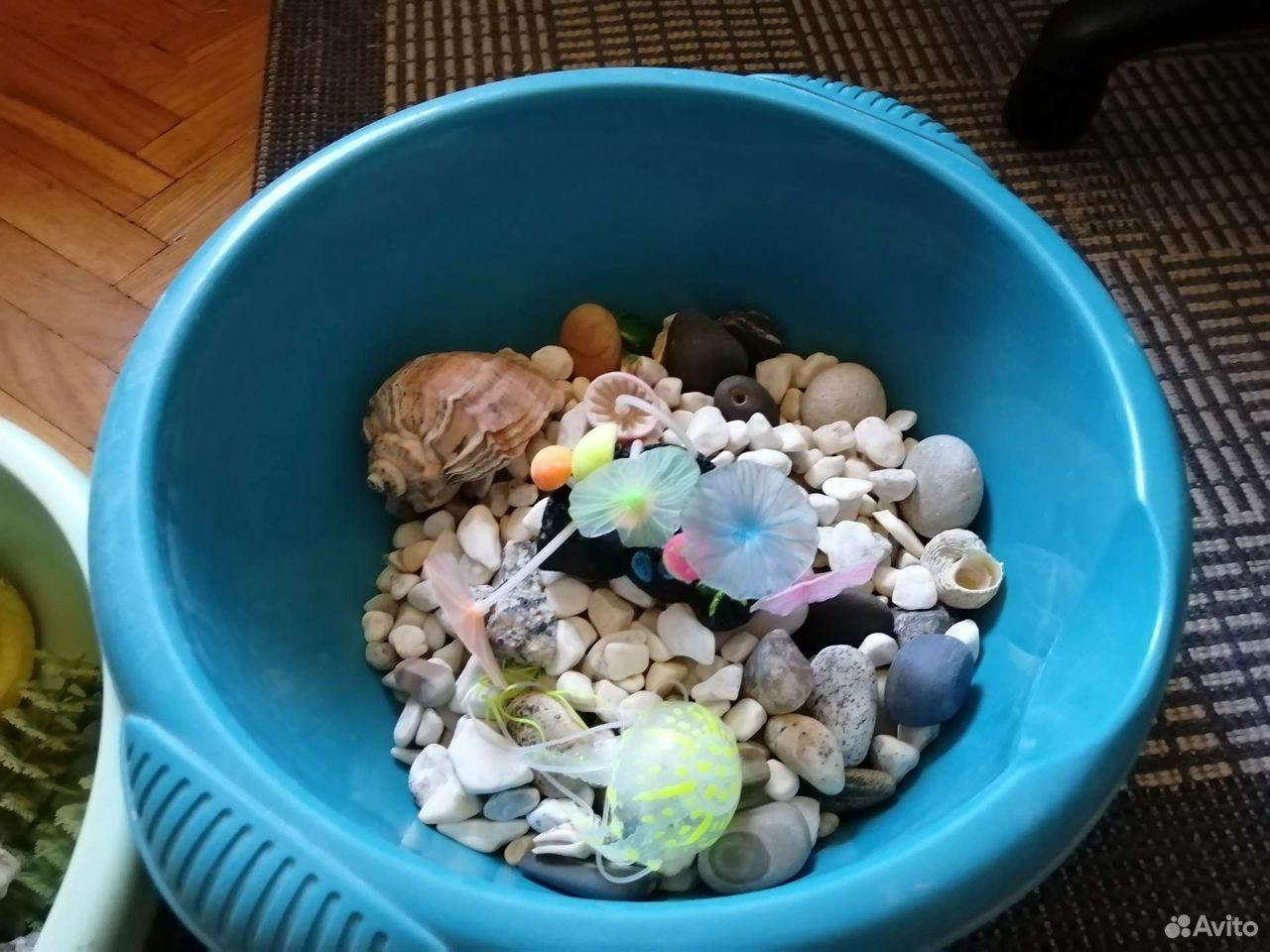 Kit for aquarium 89156096624 buy 6